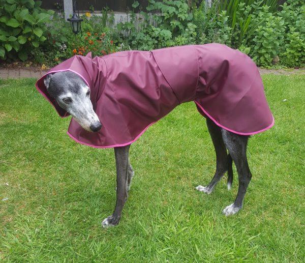 Greyhound Shower Mac - Claret