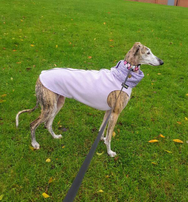 Greyhound Vest Lilac with Lilac Trim Trim