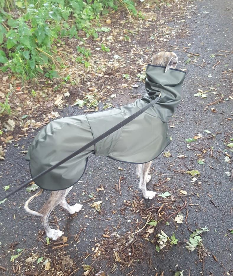 Faith Greyhound Shower Mac with Hood - Dark Olive/Black Trim