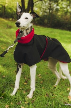 Whippet Raincoat – Fleece Lined