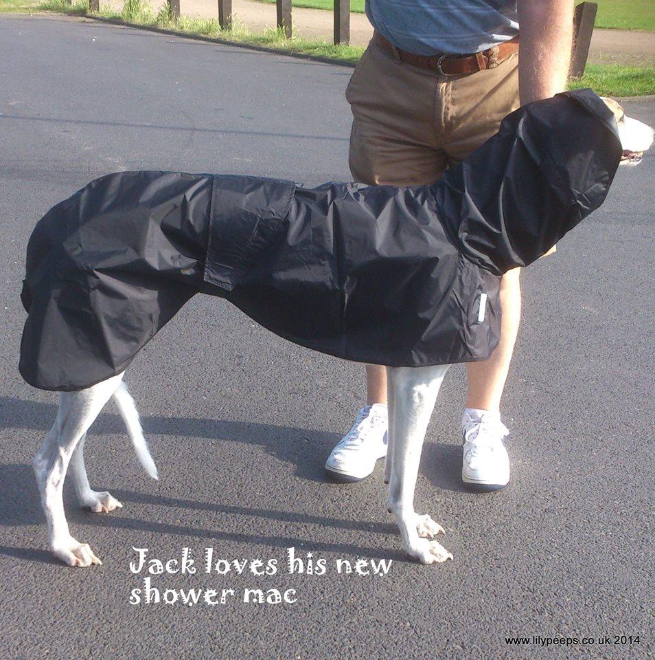 Greyhound Shower Mac black