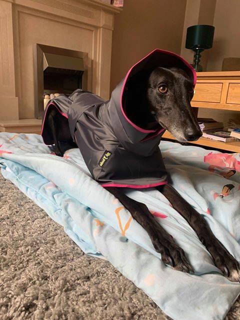 Greyhound shower mac charcoal grey fuchsia pink trim