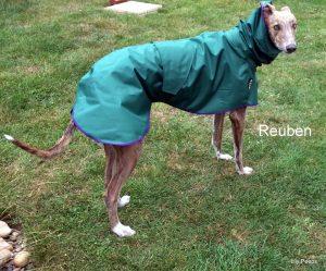 Greyhound Shower Mac - Leaf Green
