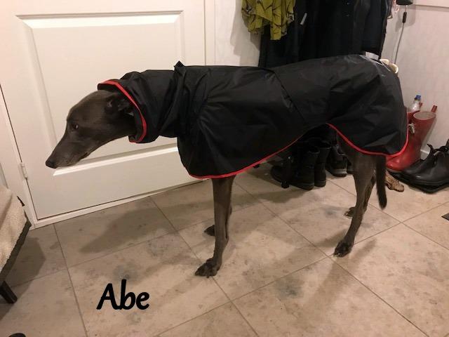 Abe from Sweden - Shower Mac - Black/Red Trim