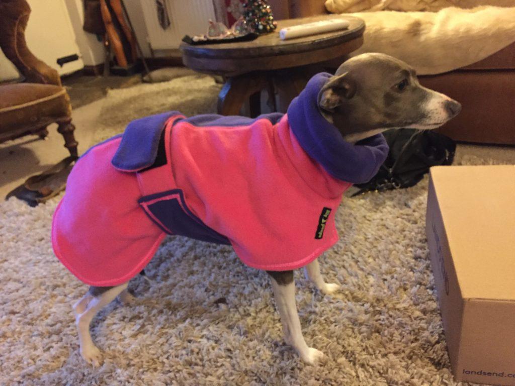 Alice (Iggy) From West Sussex - Twin Top Fleece Coat - Fuchsia+Purple