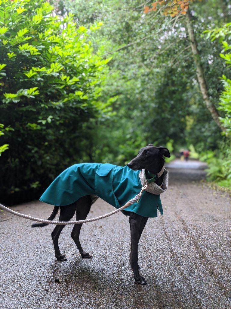 Sylvia - cotton lined raincoat - Teal/Rosebuds on Cream