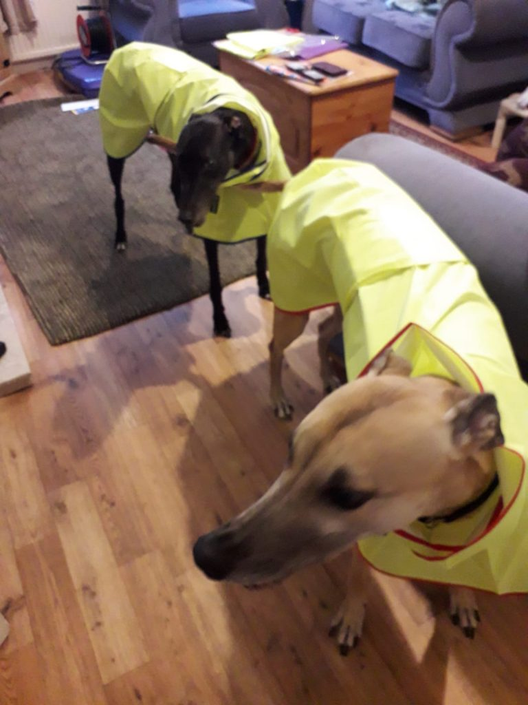 Brothers Fletcher (Black boy) & Finn from Liverpool - Shower Macs in Canary Yellow