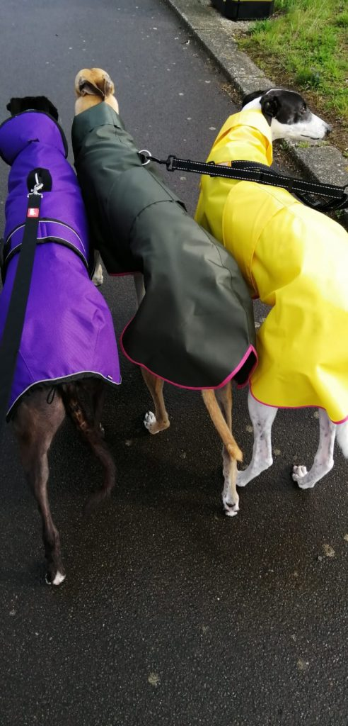 Shower Mac, with Hood - Twiggy in Canary Yellow, and Grace wearing the Olive version