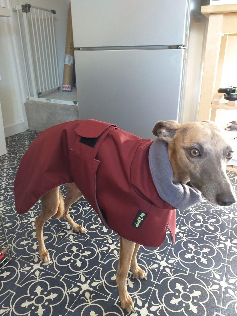 Whippet Raincoat Burgundy Grey Fleece Lining